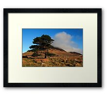A Lonely Place Framed Print