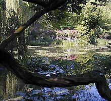 monet garden in Givenchy, France by chord0