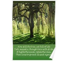 How Still the Tree Photograph and Prose Poster