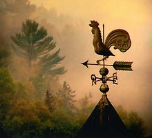 Rooster in the mist... by Gisele Bedard