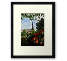 Sir Walter In View Framed Print