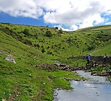 Crossing the Stream in Cressbrook Dale by Rod Johnson