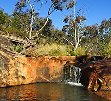 Spring Creek - Beechworth by Darren Stones