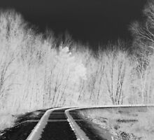 Northern Railway by Janet Gosselin