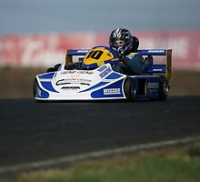 250 twin Superkart by zoompix