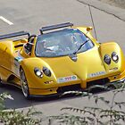 Zonda in Action by Angryman