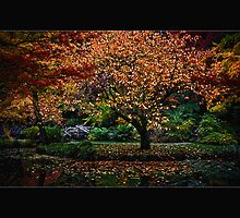 Autumn Delight by Samantha Cole-Surjan