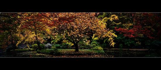 Alfred Nichols Gardens Pano by Samantha Cole-Surjan