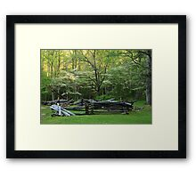 Early Spring Morn Framed Print
