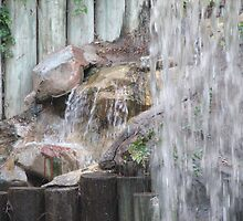 Waterfall at Disneyland Hotel by TLCGraphics