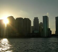Miami skyline at sunset by nancy dixon