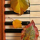 Autumn Leaf Trio on Piano by Anna Lisa Yoder