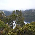 peeking at Dove Lake, and the mist shrouded Cradle Mt  by gaylene