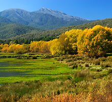 Mount Beauty by Darren Stones