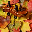 Violin Scroll on Autumn Leaves by Anna Lisa Yoder