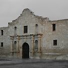 The Alamo by Holly Werner