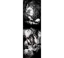 Mrs. Frisbee and the Rats of NIMH pt4 Photographic Print
