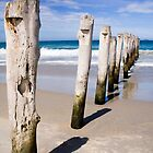 Old Jetty, St Clair Beach, Dunedin by Elana Bailey