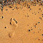 Foot Print in the Sand by Peter Clements