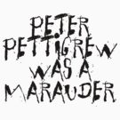 Peter Pettigrew by Ukulady