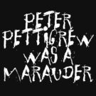 Peter Pettigrew 2. by Ukulady