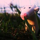 Pocket Cow at Dusk by Diana Forgione
