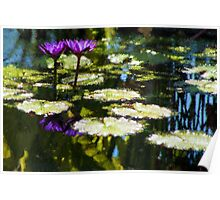Waterlilies - Sunny Green and Purple Impressions Poster