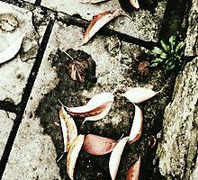 Fallen Leaves by Ms-Bexy