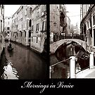 Mornings in Venice by DavidROMAN