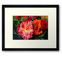 Colours & Flowers Speak all Languages Framed Print