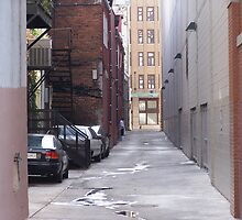 A CUT THU ALLEY by ELIZABETH B