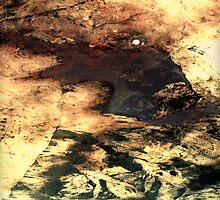 0624 From a Distance by jennifer joy