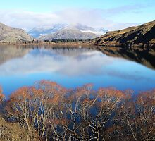 Hayes Heaven - Lake Hayes, South Island, New Zealand by Deanna Roberts Think in Pictures
