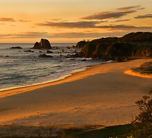 Narooma Beach by Dulcie Dal Molin