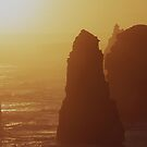 Some of the apostles bathed in the late afternoon sun by Mark Reed