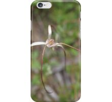 White Spider and Beetle iPhone Case/Skin