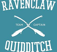 Hogwarts Quidditch Team: Ravenclaw  by Ian A.