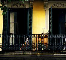 Barcelona Balcony by Alison Cornford-Matheson