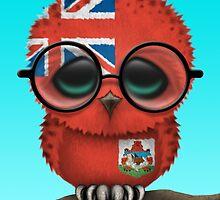 Nerdy Bermuda Baby Owl on a Branch by Jeff Bartels