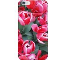 Tulips for You iPhone Case/Skin
