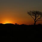 African sunset by Anthony Catt