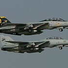 Tomcats! by ScottH711