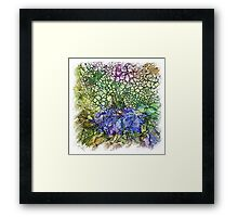 The Atlas Of Dreams - Color Plate 130 Framed Print