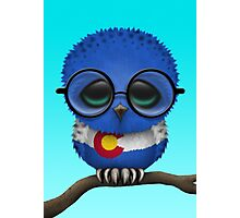Nerdy Colorado Baby Owl on a Branch Photographic Print