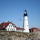 Portland Head Light House with seagull by Linda Jackson