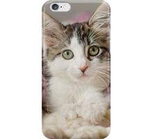 Kitten in Blanket iPhone Case/Skin