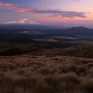 taupo outlook by Mark Reed