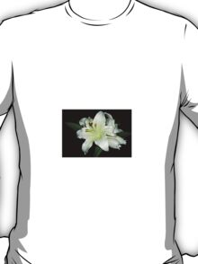 Black and White... (Lilium) Free state, South Africa T-Shirt