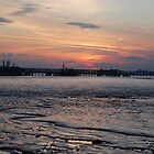 Mud Flats by woodgag