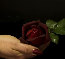 Passionate hand by Jan Clarke